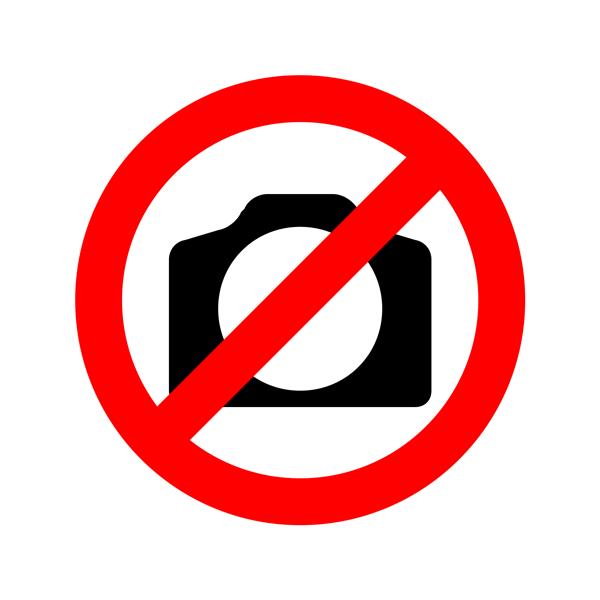 DivX 6 Logo